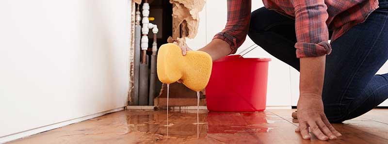 impieza de tapicerias por siniestros inundacion